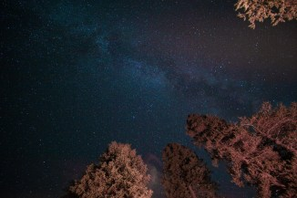 milky way over sequoia